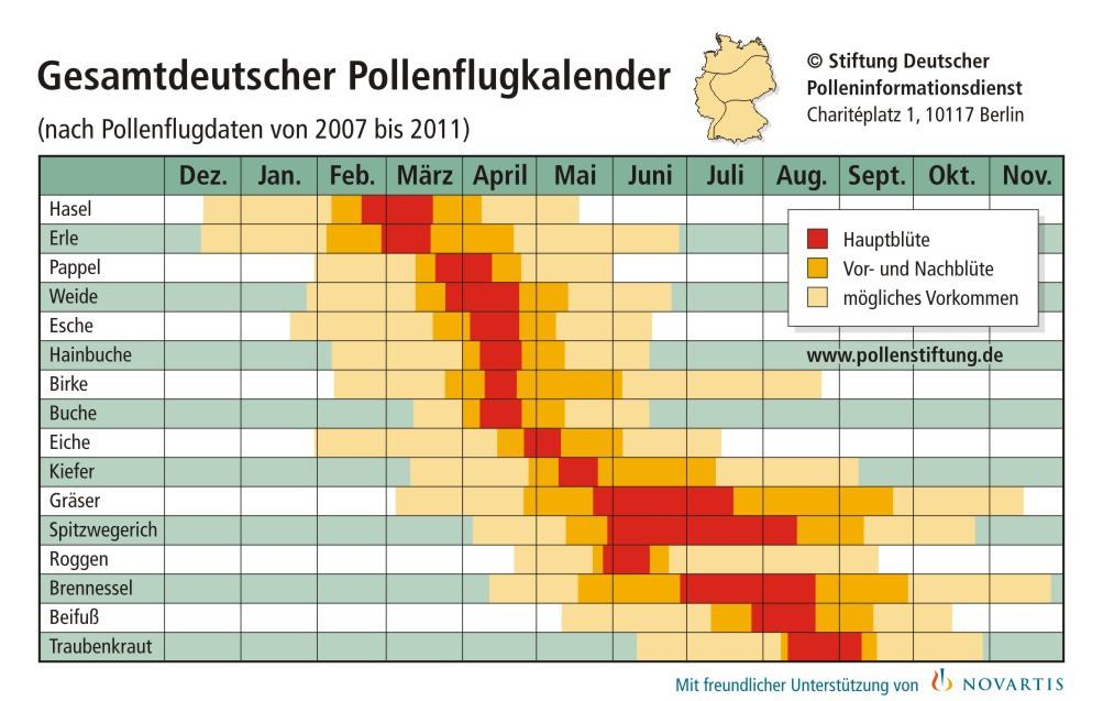 Heuschnupfen und Allergien